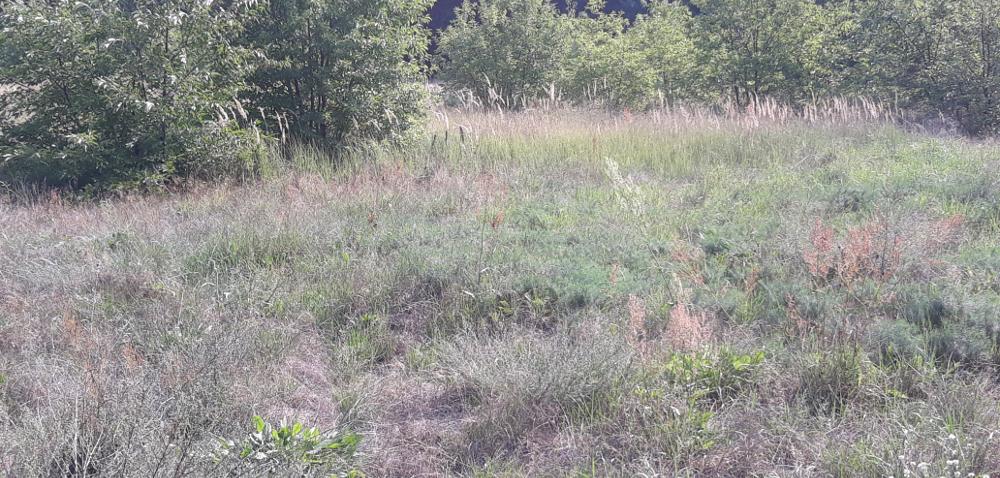 Wojumez - Wypożyczalnia Sprzętu Ogrodniczego Wrocław